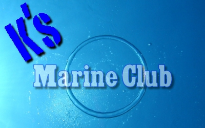 沖縄の美ら海で癒されたいなら K's マリンクラブ!